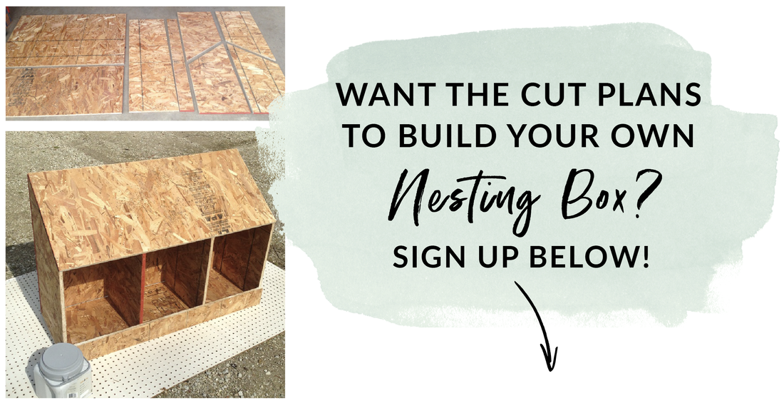 download the free nesting box cut plans and build a nesting box from one piece of plywood