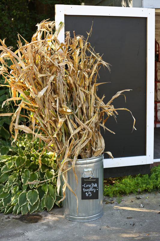 Dried and bundled corn stalks for sale at our farm stand in Milwaukee WI by Green Willow Homestead. fall display