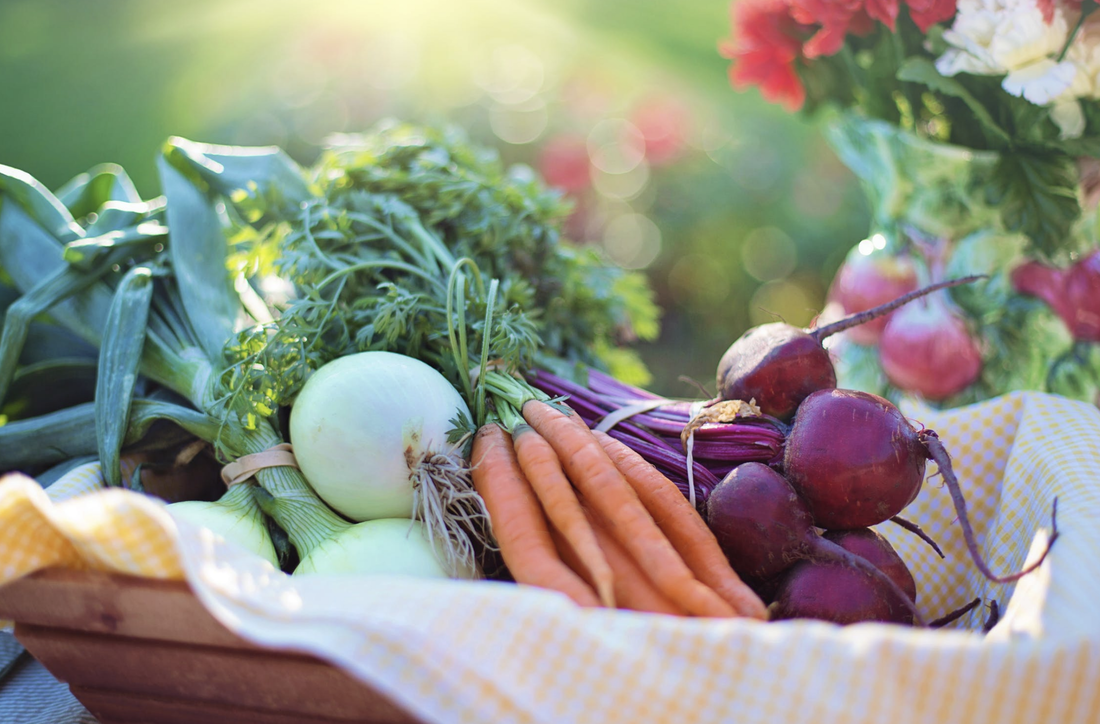 Having a garden allows you to eat healthier more nutritious food
