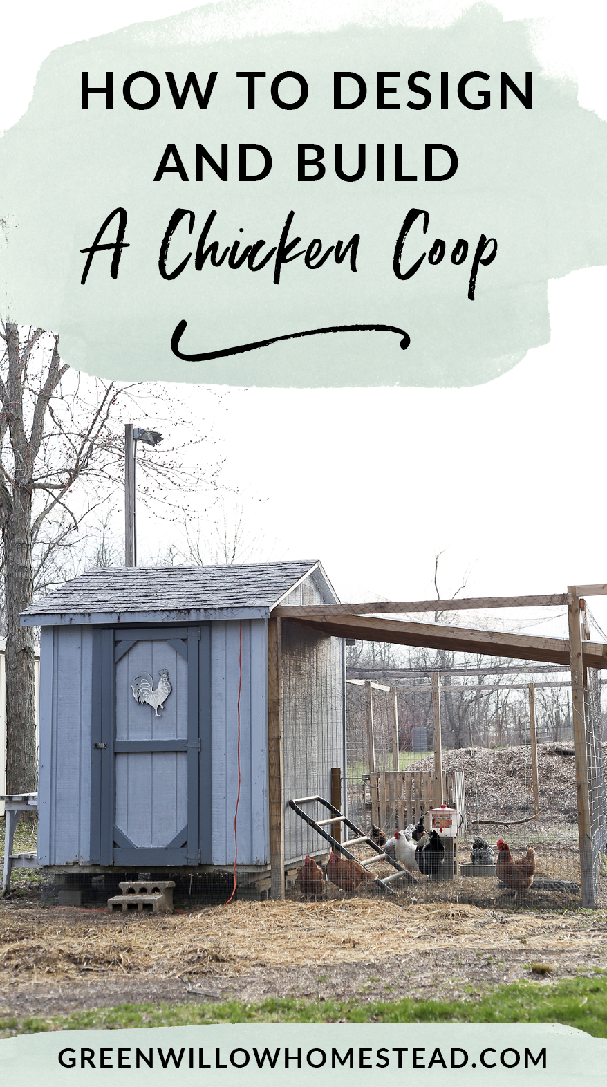 How to design and build a chicken coop for your backyard hens
