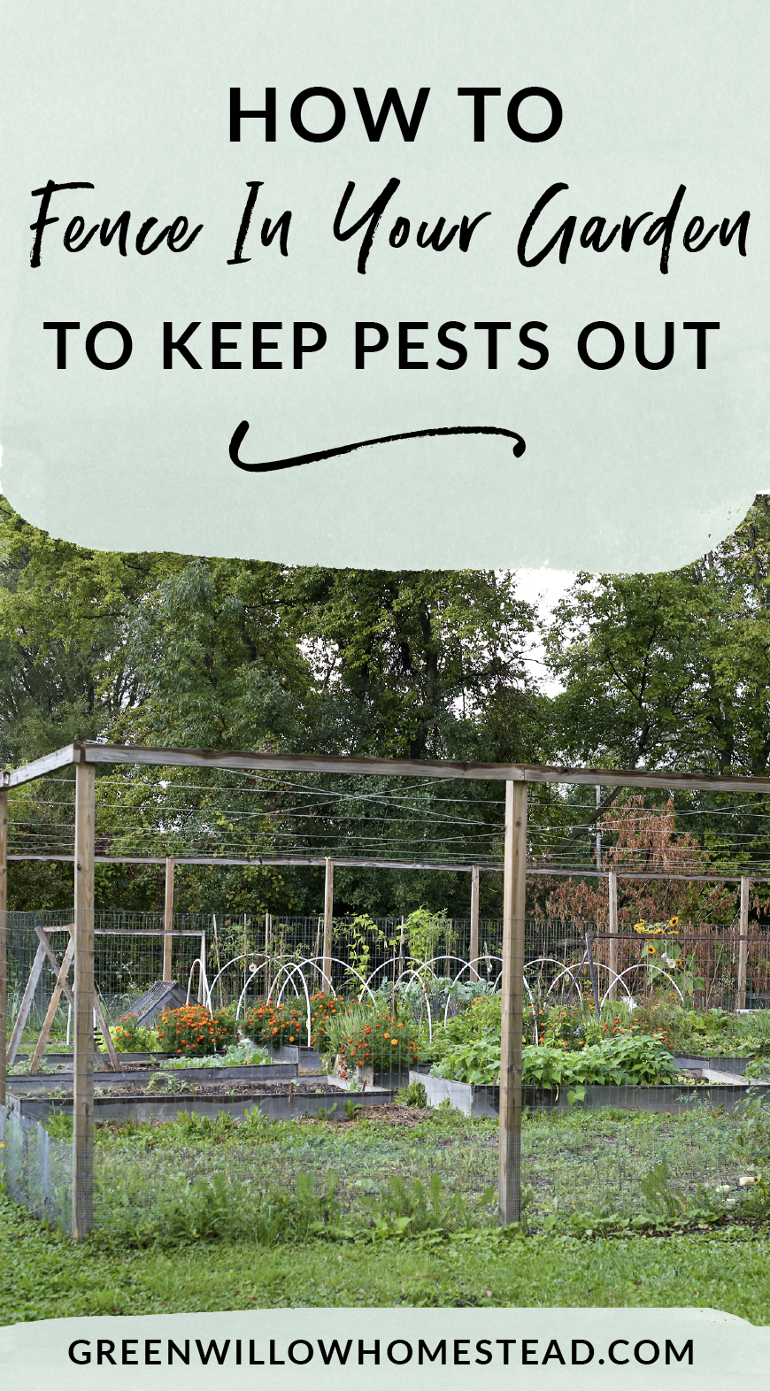 How to fence in your vegetable garden to keep pests out