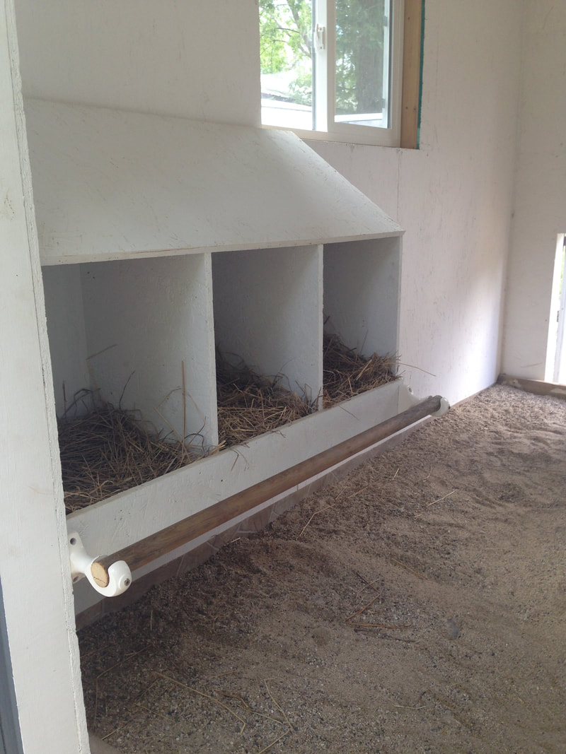 Our newly installed chicken nesting box in the chicken coop