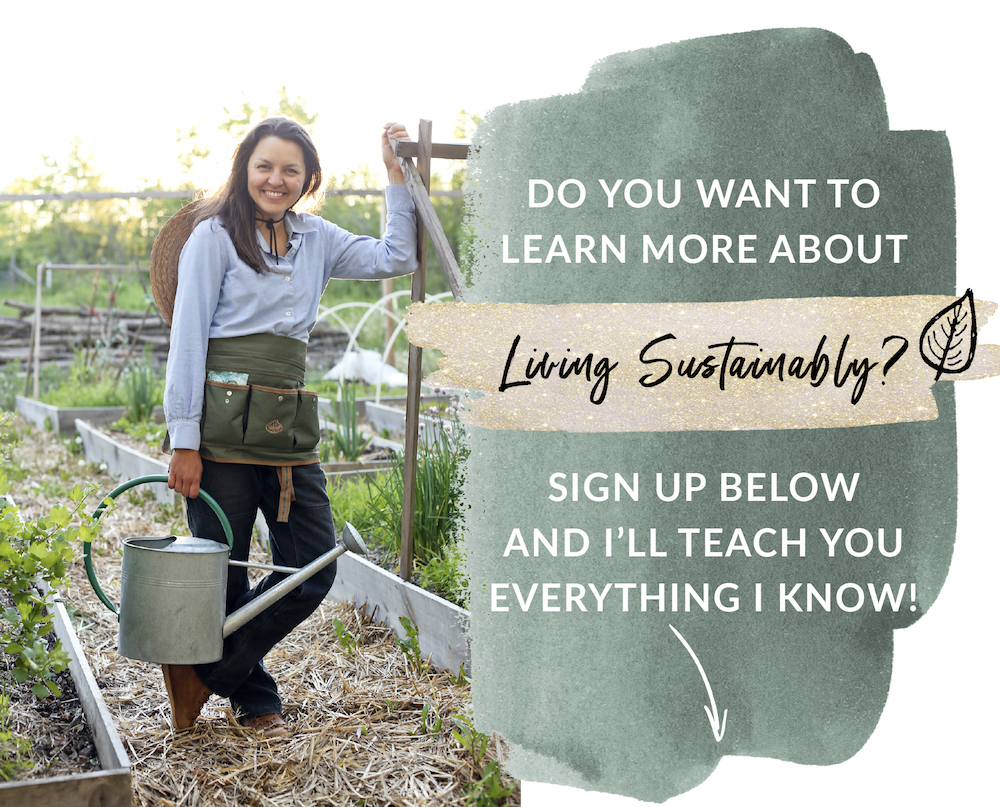 Sign up for the sustainable living email list with Kelsey Jorissen