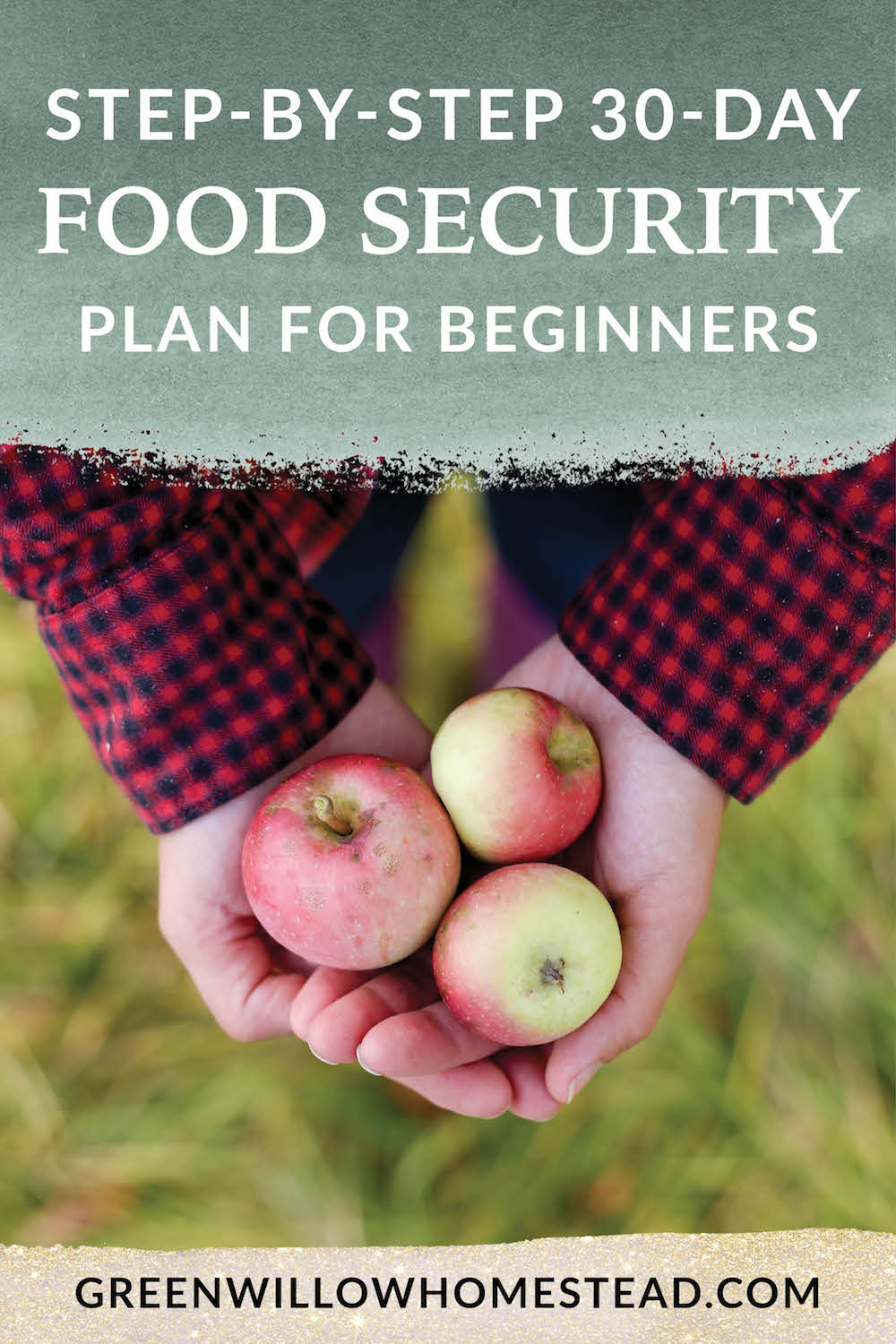 Step by step food security plan for beginners