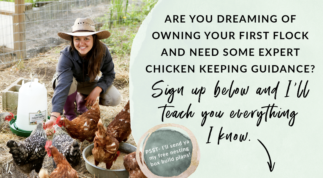 sign up for the chicken keeping email newsletter