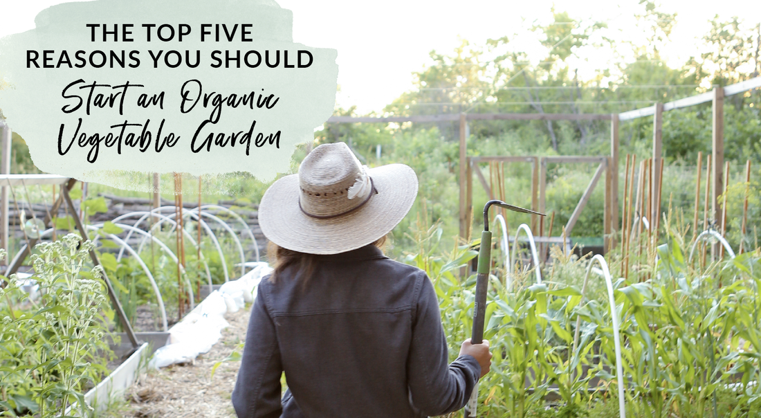The top five reasons you should start gardening organically