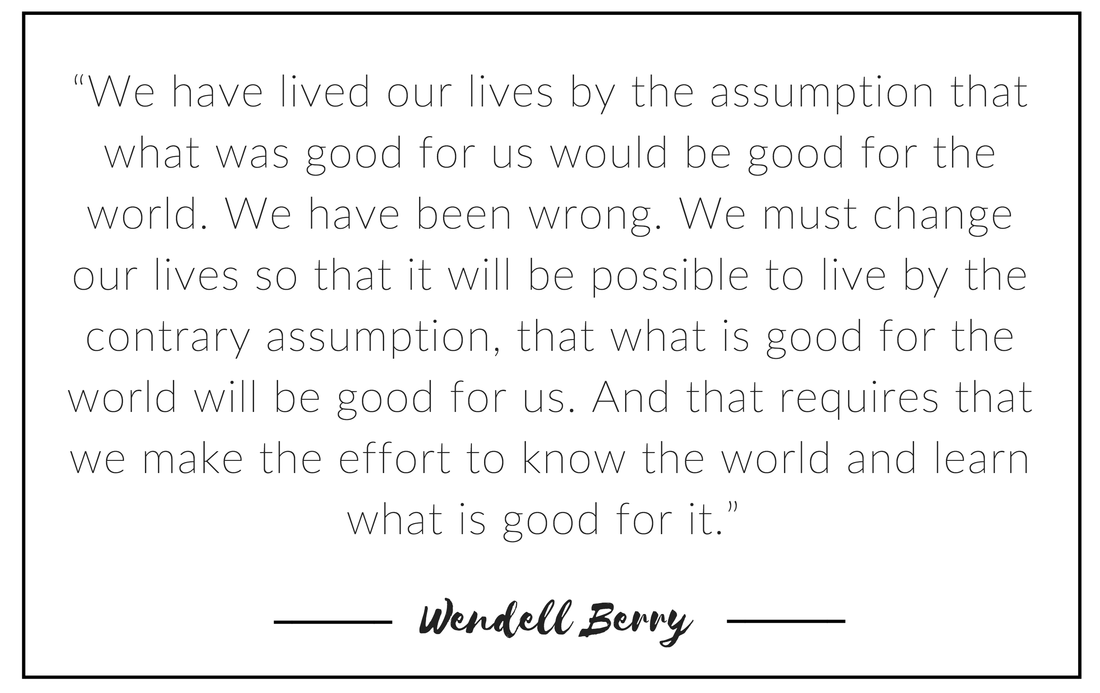Quote by Wendell Berry