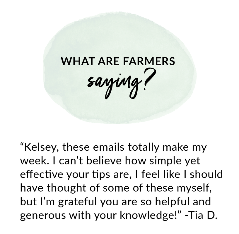 How to use online marketing for your farm with Kelsey Jorissen