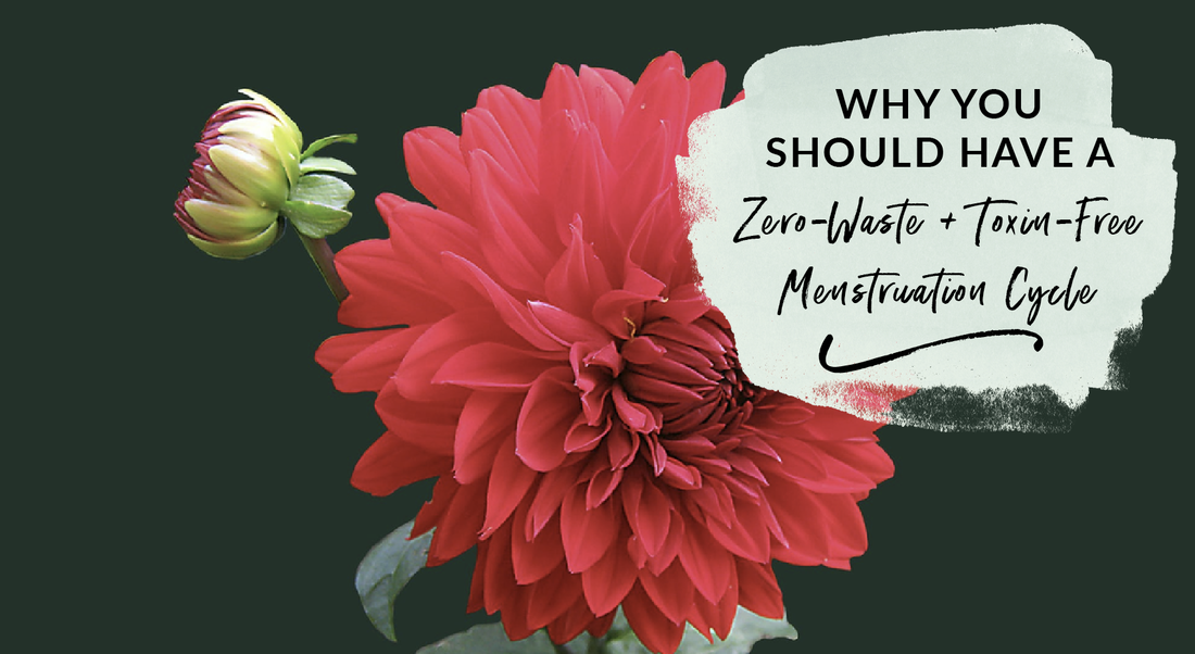 Why you should have a zero-waste and sustainable toxin free menstruation cycle