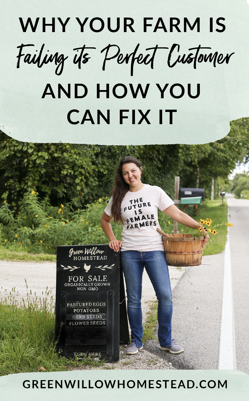 Why your farm or homestead is failing its perfect customer and how you can fix it with Kelsey Jorissen of Green Willow Homestead - Online Marketing For Farmers